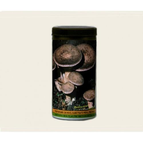 Barattolo micelio secco Funghi Cardoncello 100g