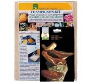 Kit ready sowing of shiitake mushrooms