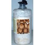 Micelio fresco di funghi Prataiolo crema bottiglia 2,5LT