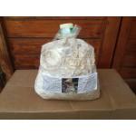 Micelio Fresco funghi ShiiTake in sacchetto 4 Litri